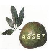 The Association of Small Scale Enterprises in Tourism (ASSET)'s Logo'