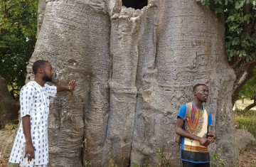 """""""The idea of encouraing tourists to come visit the entire Gambia is really exciting. I hope to grow as an independent tour guide, train others and contribute to making our region attractive for visitors."""""""