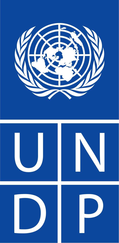 UNDP's Logo'